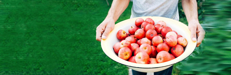 Slider Äpfel