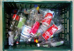 Pfandflaschen in einer Kiste